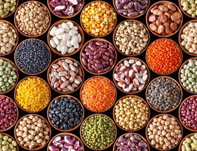 Can Eating Beans Inhibit Cancer Cell Growth?