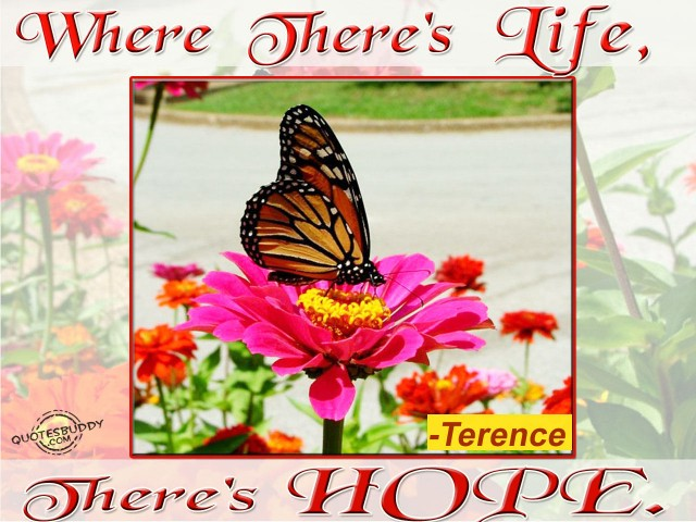 Where there is life, there is hope!