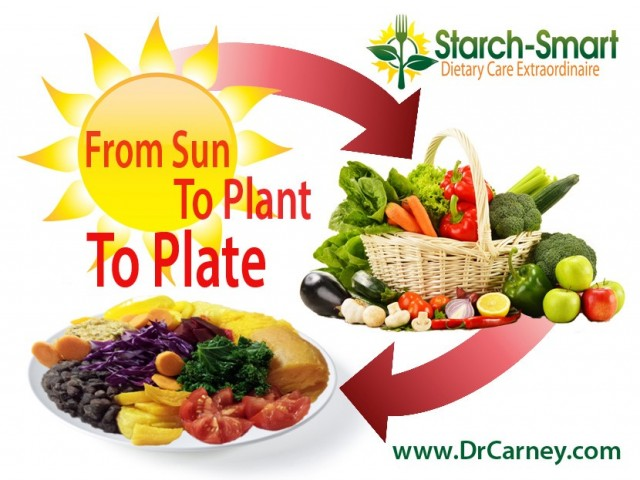 Starch-Smart® System: From Sun To Plant To Plate