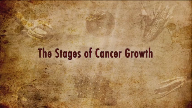 Colin Campbell Explains Cancer Growth