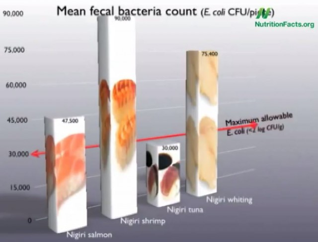 Fecal Bacteria Content in Sushi