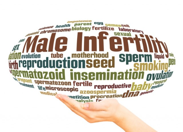 Processed Meats Overlooked When Discussing Male Infertility?