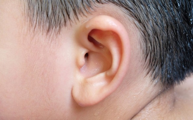 Dairy Associated With Recurrent Ear Infections